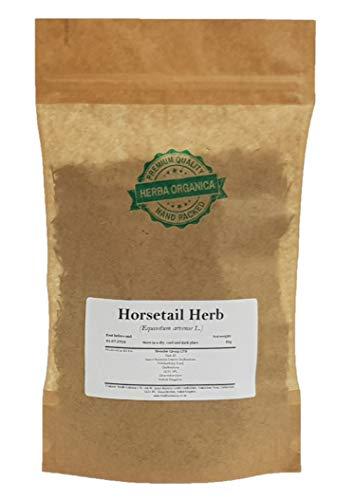 Horsetail Herb - Equisetum Arvense...