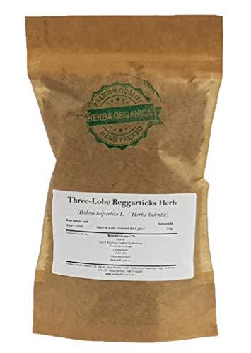 Three-Lobe Beggarticks Herb -...