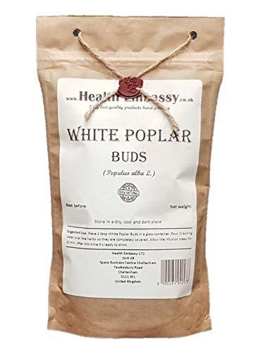 White Poplar Buds (Populus Alba L.)...