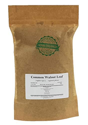 Common Walnut Leaf - Juglans Regia...