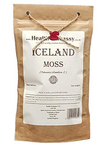 Iceland Moss (Cetraria islandica) -...