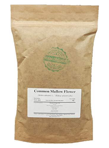 Common Mallow Flower - Malva...