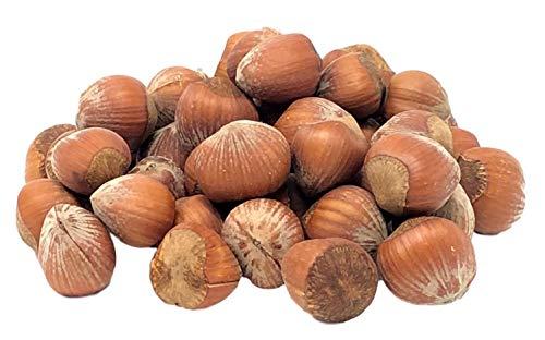NUTS U.S. - Oregon Hazelnuts In...