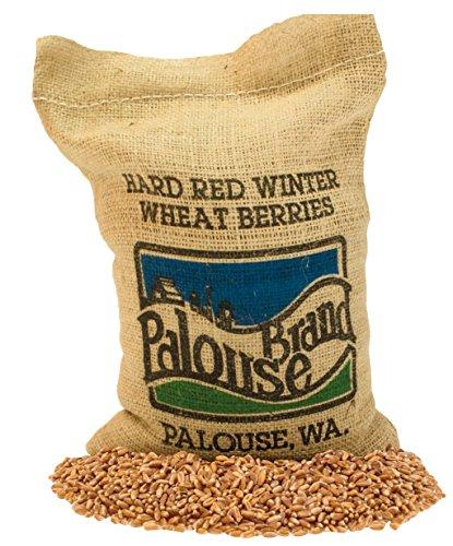 Hard Red Winter Wheat Berries •...