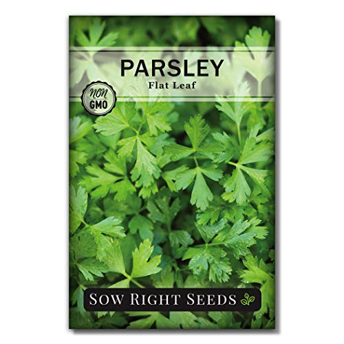 Sow Right Seeds - Flat Leaf Parsley...