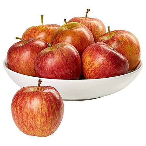 Evaxo Organic Fuji Apples, 5.5...