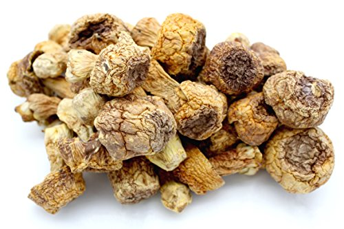 Dried Almond Mushroom/Agaricus...