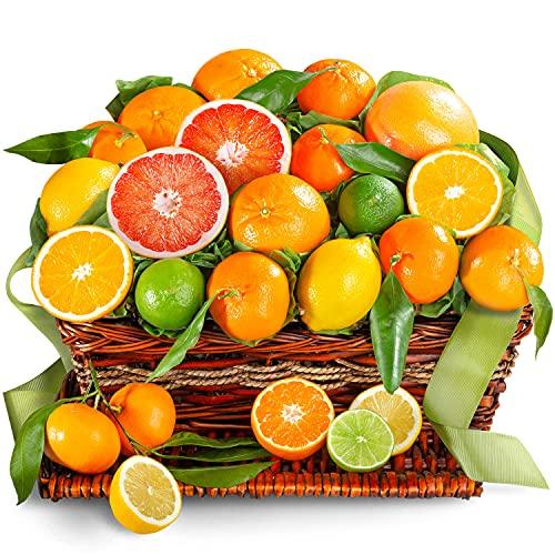 Golden State Fruit Sweet Sunshine...