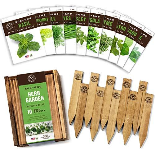 Herb Garden Seeds for Planting - 10...