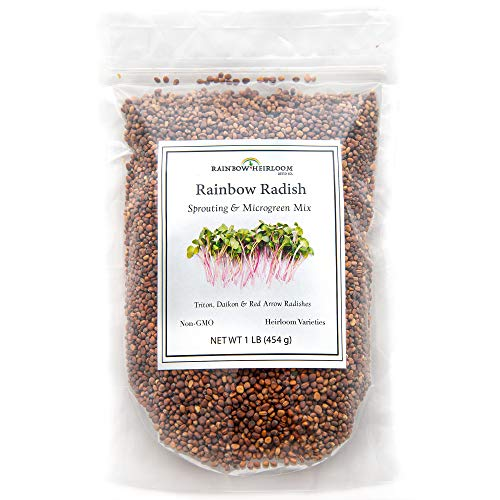 Rainbow Radish Sprouting Seeds Mix...