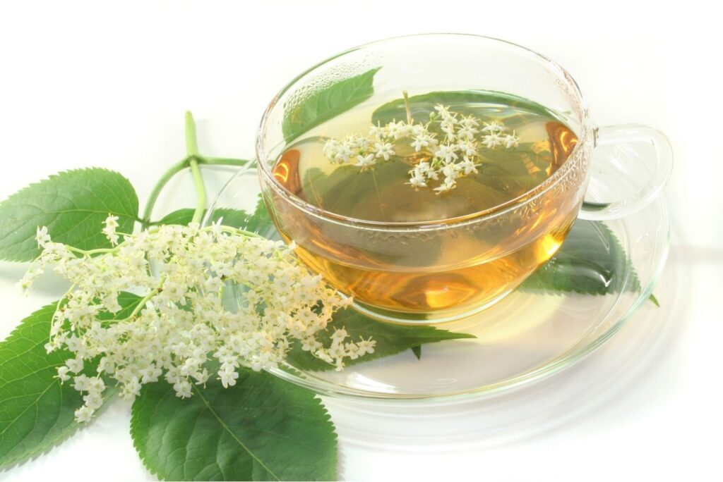 10+ Natural Treatments for Headache - Elderflower tea