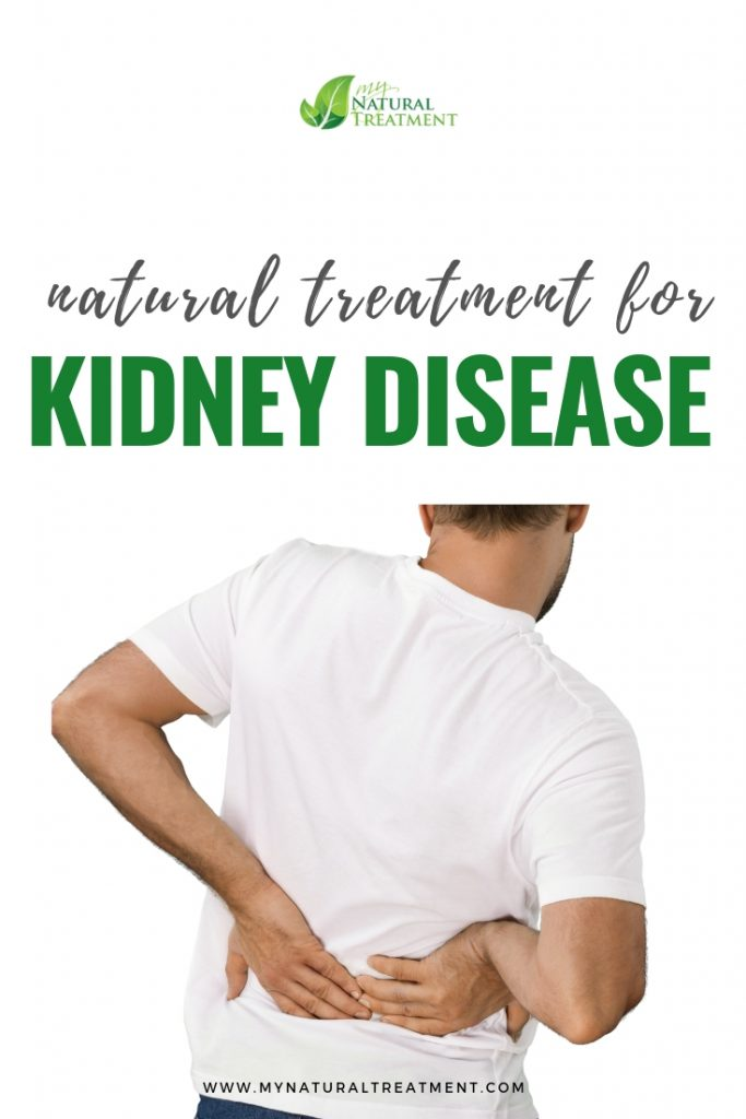 Natural Treatment for Kidney Disease