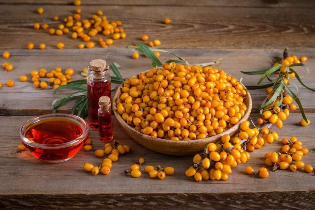 3 Natural Treatments for Gastric Ulcers - Sea buckthorn oil