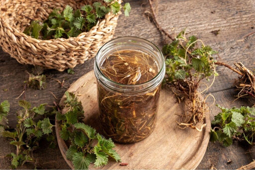 2 Natural Treatments for Osteoarthritis - Nettle Root