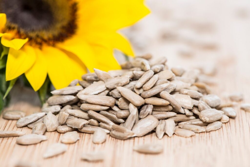Natural Remedy for Dehydrated Skin – Sunflower Seeds