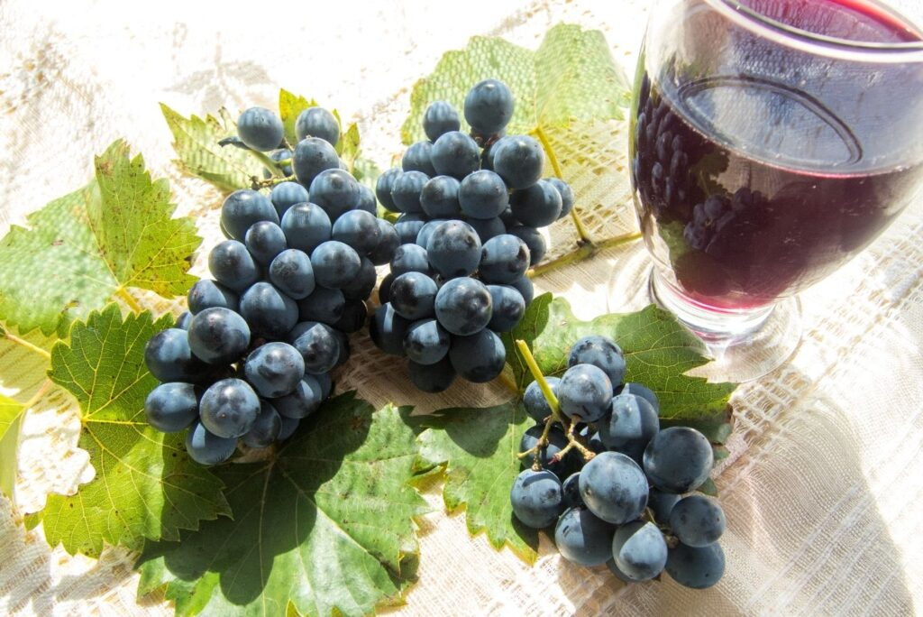 20 Natural Treatments for Kidney Stones - Grapes Stum
