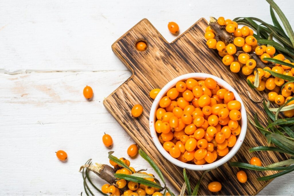 Sea Buckthorn Uses and Contraindications - Sea Buckthorn Berries
