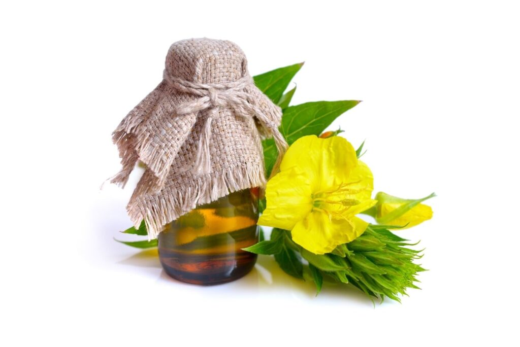 Natural Remedy for High Cholesterol - Common evening primrose