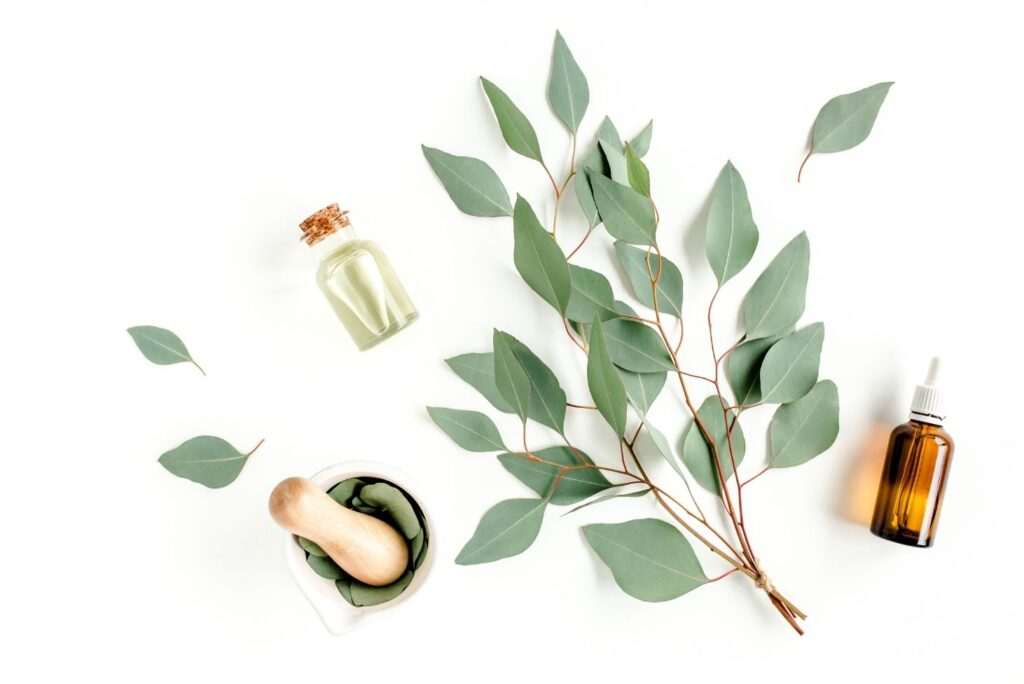 Natural Treatment for Clogged Nose - Eucalyptus Oil