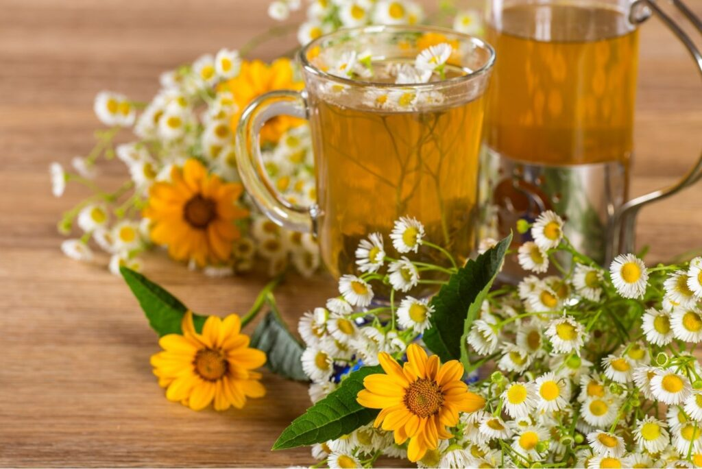 Natural Treatment for Mastoiditis - Chamomile Calendula Tea