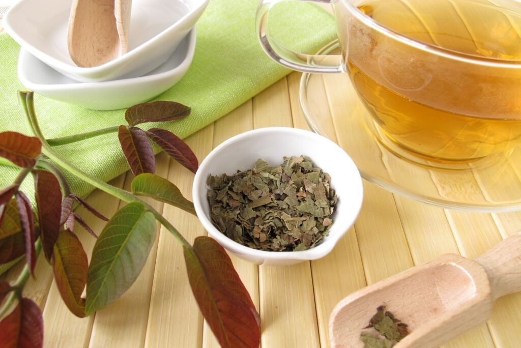 9 Natural Remedies for Thyroid Nodules - Walnut Leaves Tea