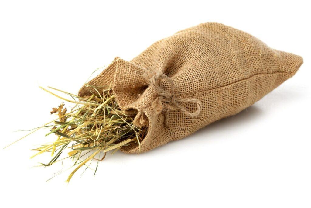 5 Natural Remedies for Paralysis - Hay Bag Sachet