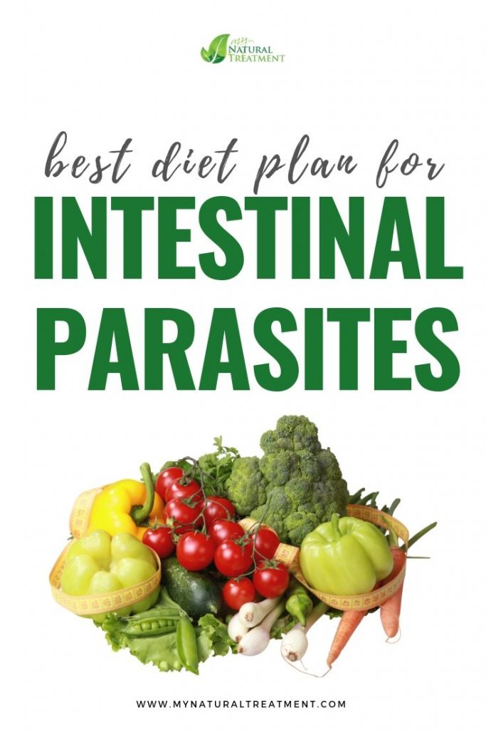 Diet for Intestinal Parasites