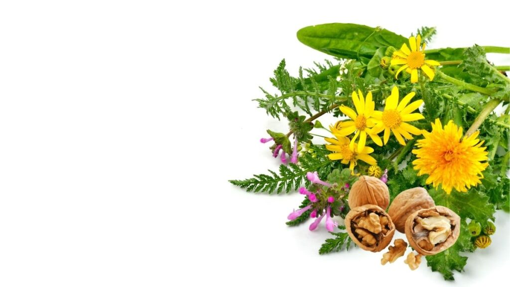 5 Natural Remedies for Anal Abscess - Herbs