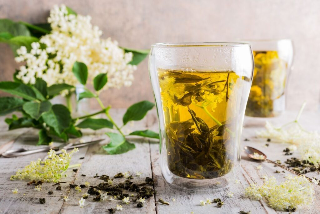 Home Remedy for Acrocyanosis – Elder Bark Tea