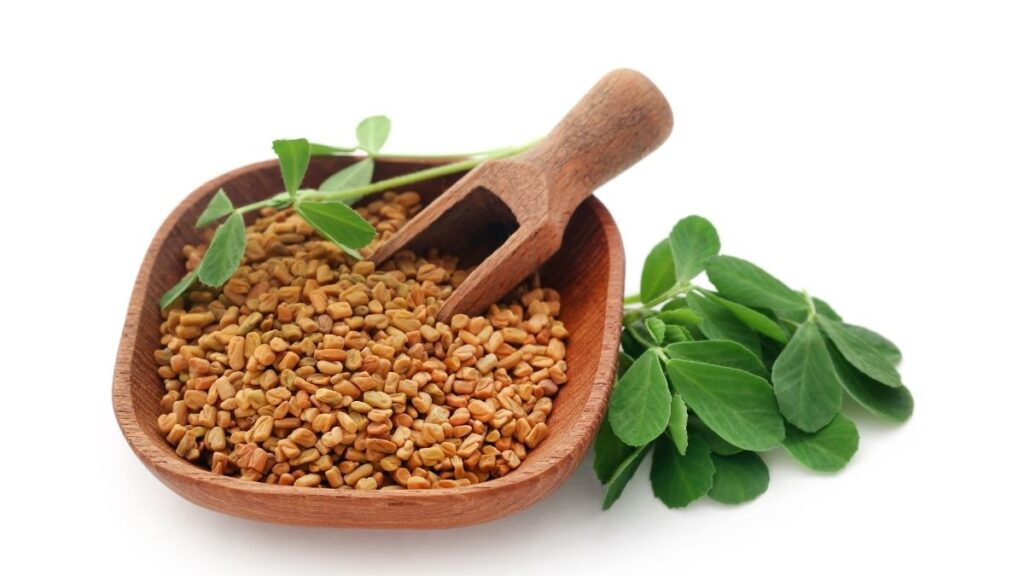 Spices that Lower Blood Sugar Naturally - Fenugreek