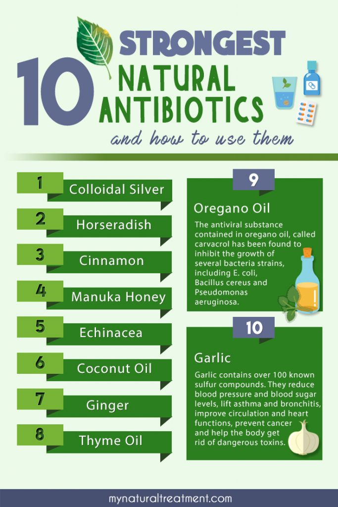 10 Strongest Natural Antibiotics and How to Use Them