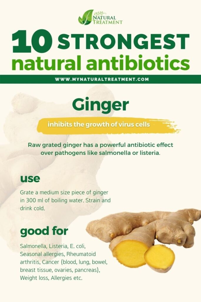 Strongest Natural Antibiotics - Ginger - MyNaturalTreatment.com
