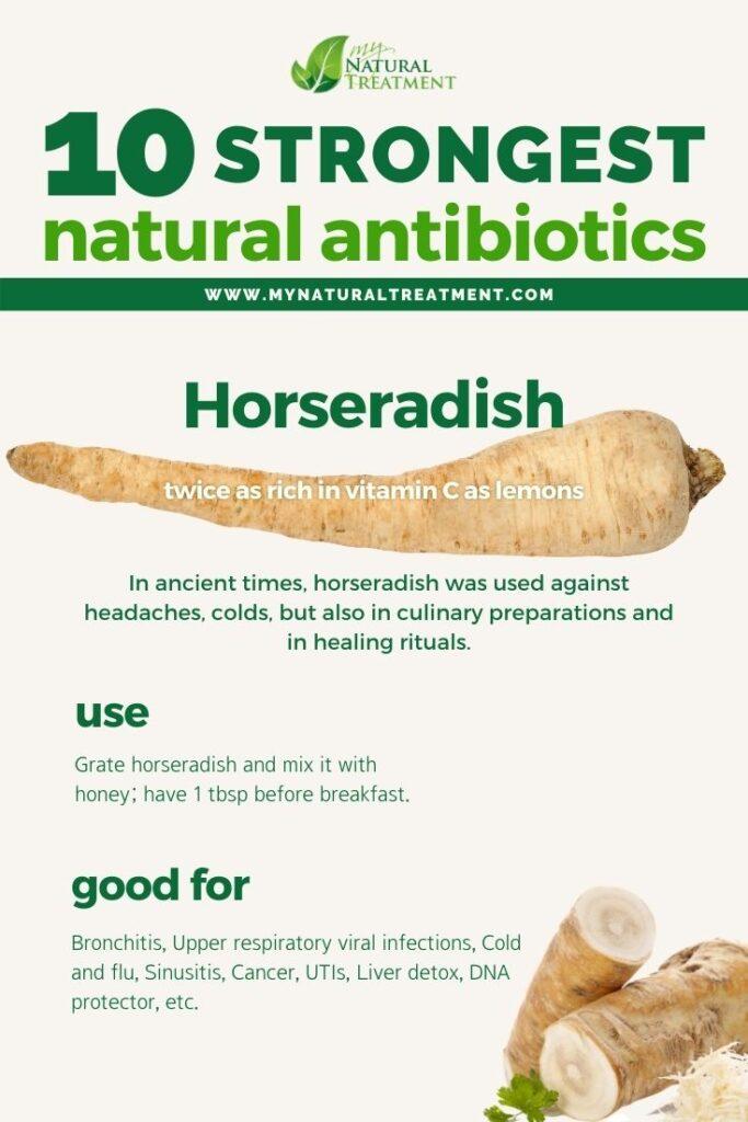 Strongest Natural Antibiotics - Horseradish - MyNaturalTreatment.com