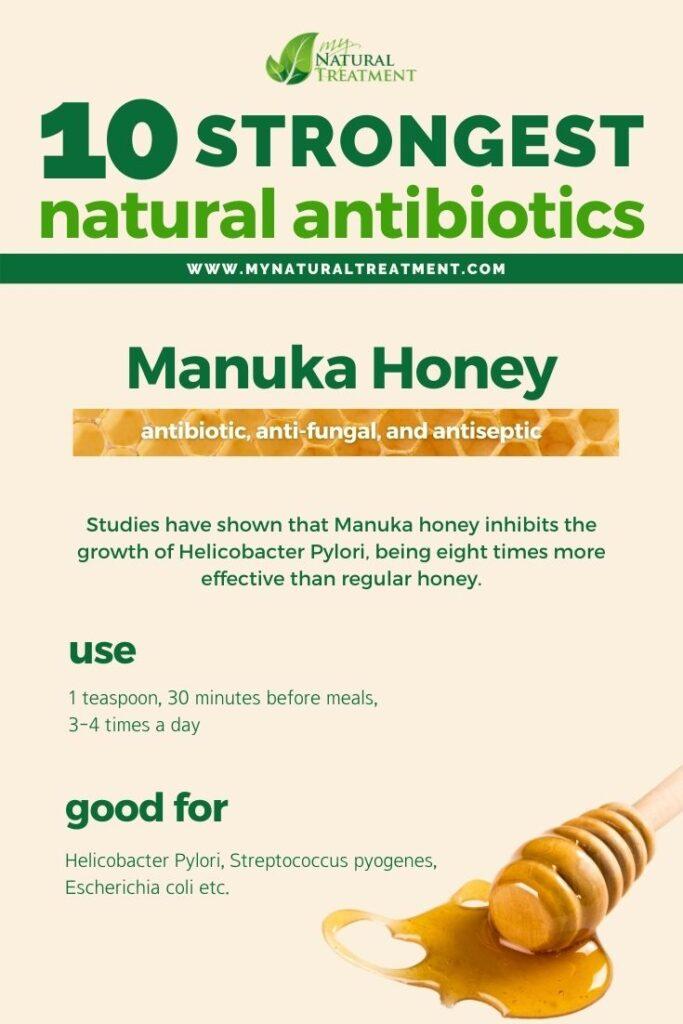 Strongest Natural Antibiotics - Manuka Honey - MyNaturalTreatment.com
