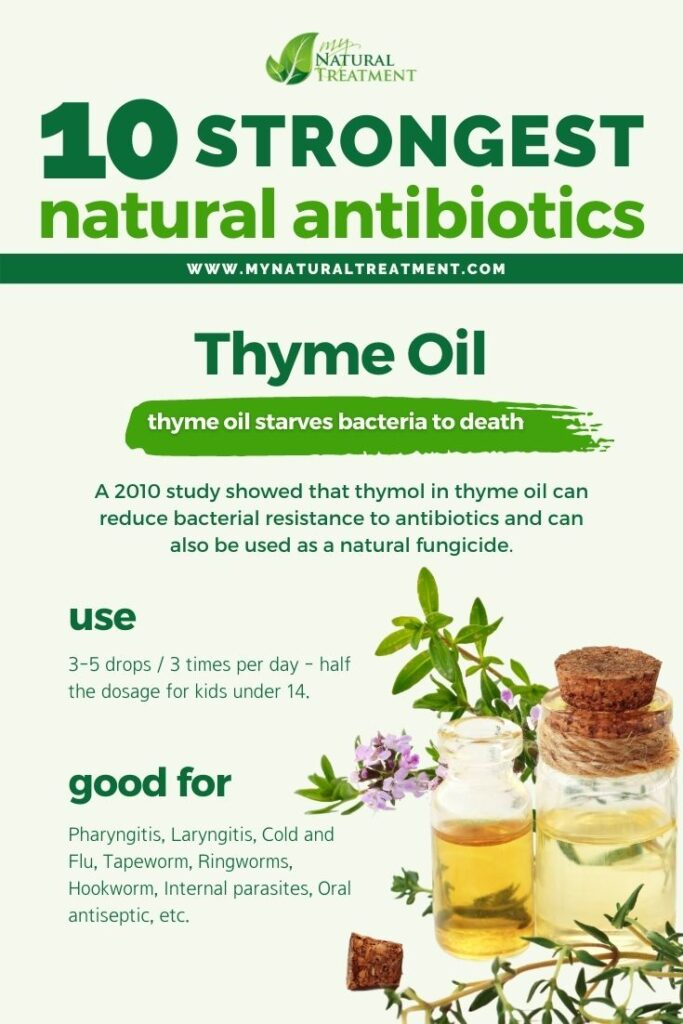 Strongest Natural Antibiotics - Thyme Oil - MyNaturalTreatment.com
