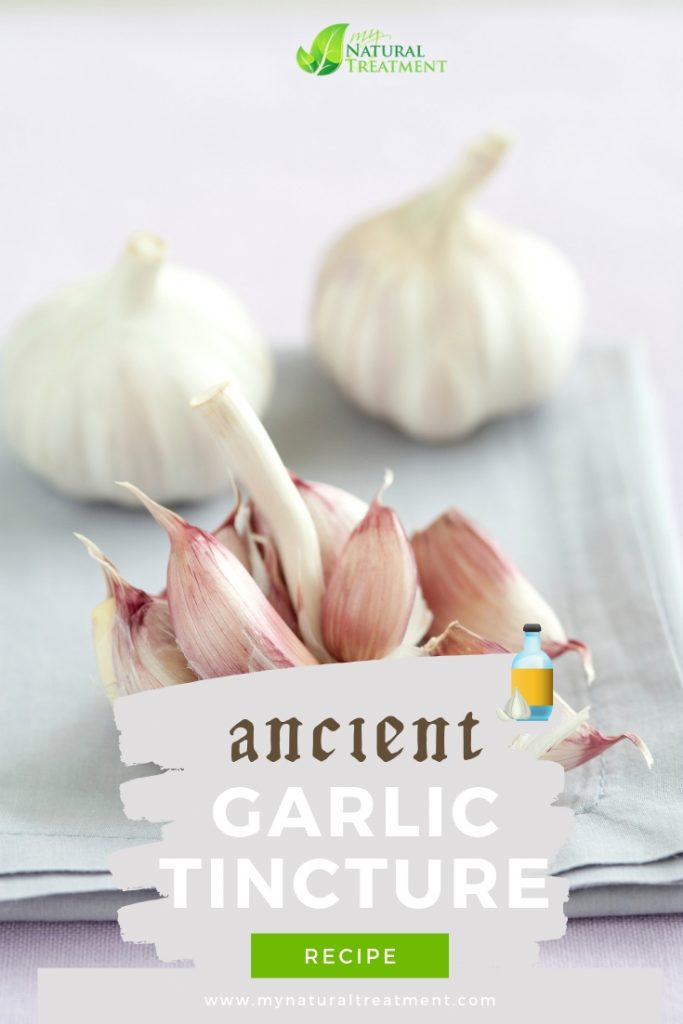 Garlic Tincture Recipe - The Best Natural Antibiotic MyNaturalTreatment.com #naturalantibiotic