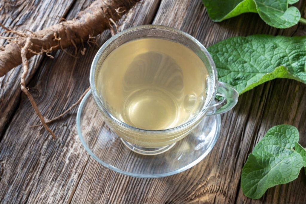 30+ Burdock Root Uses, Benefits, and Home Remedies - Burdock Root Tea