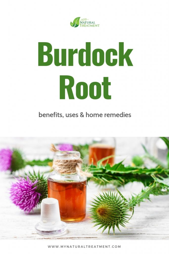 Burdock Root - Benefits, Uses and Home Remedies MyNaturalTreatment.com