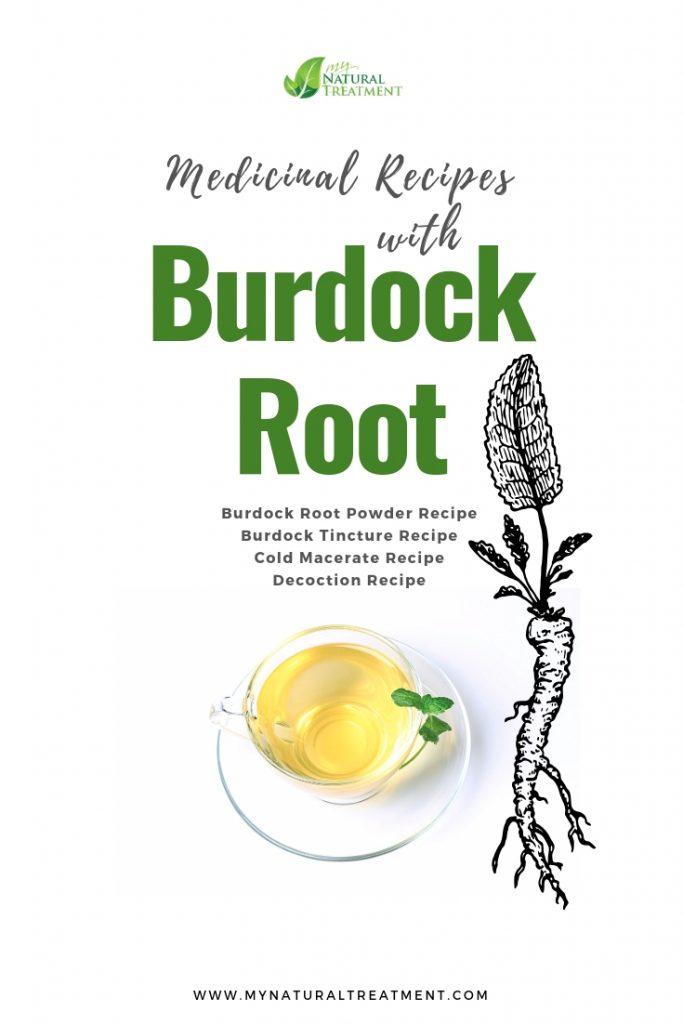 Burdock root medicinal recipes and home remedies.