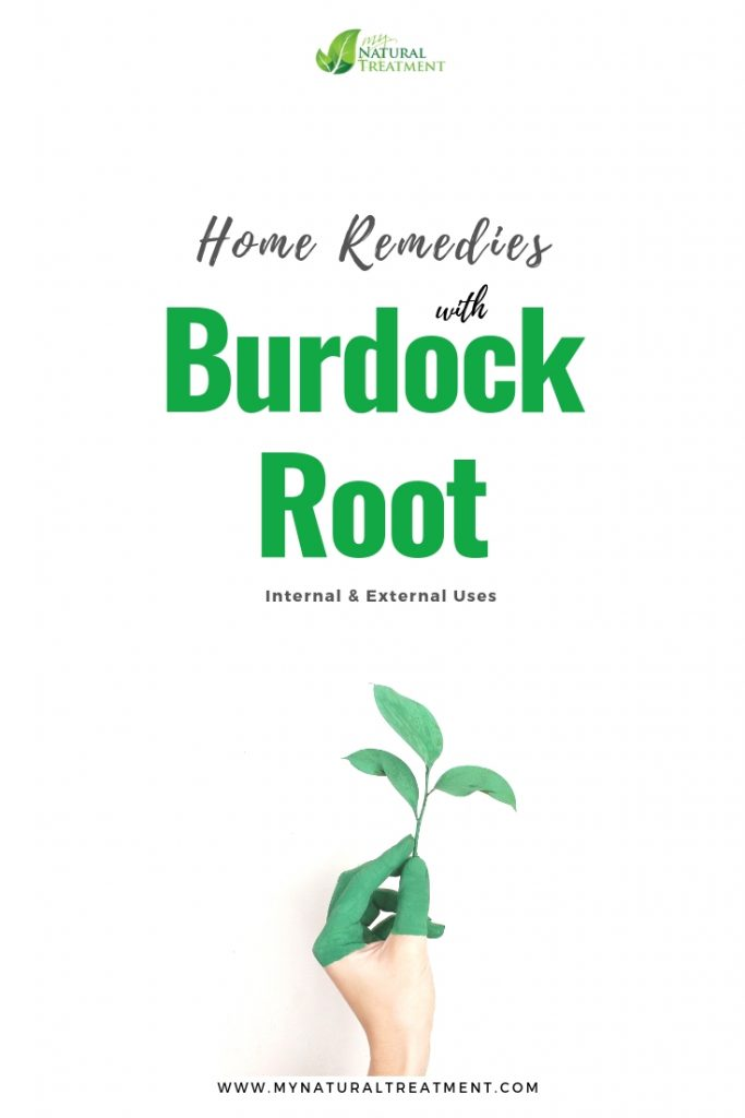 Home Remedies with Burdock Root - Internal & External Uses