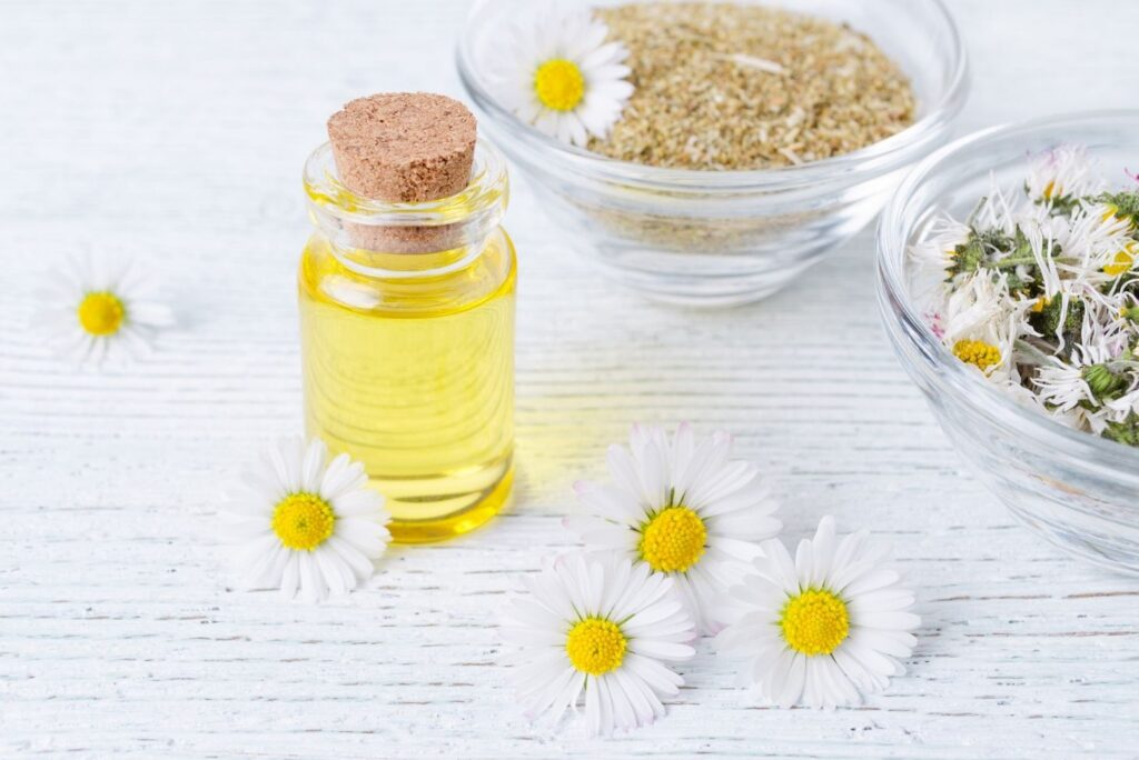 7 DIY Natural Skincare Recipes with Chamomile - Chamomile Oil