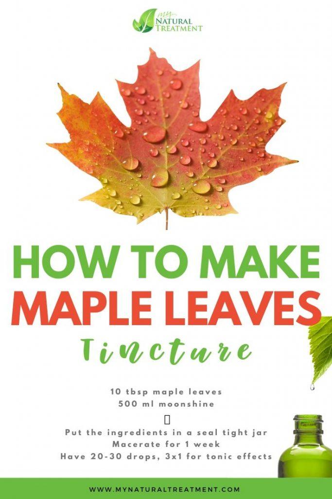 Maples Leaves Tincture recipe