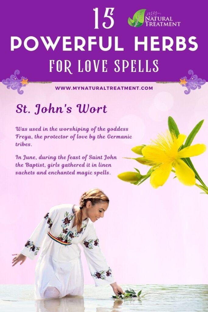 St John's Wort - Powerful Magic Herbs for Love Spells - MyNaturalTreatment.com