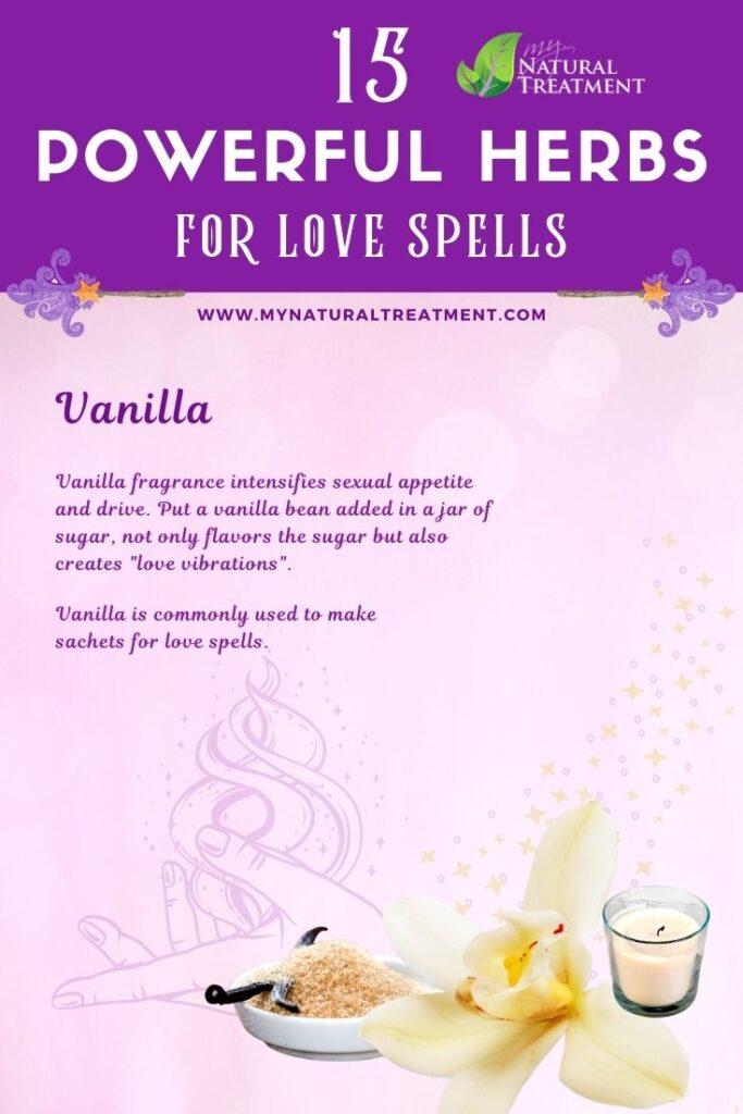 Vanilla - Powerful Magic Herbs for Love Spells