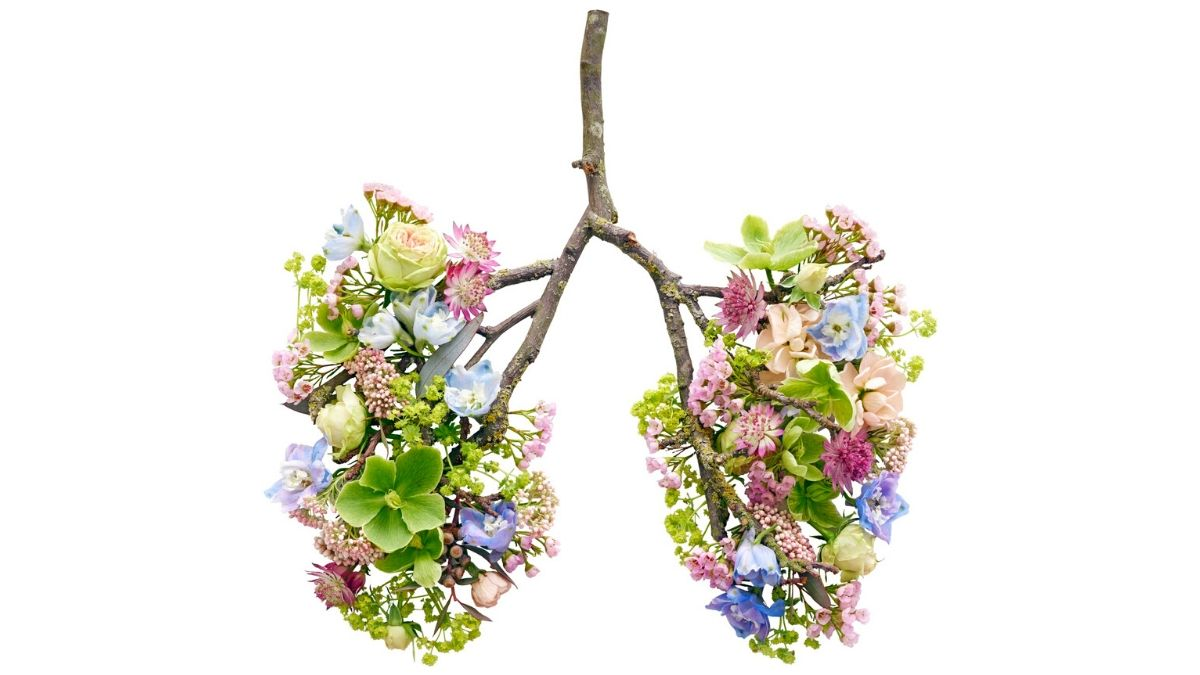Lung Calcification Home Remedy