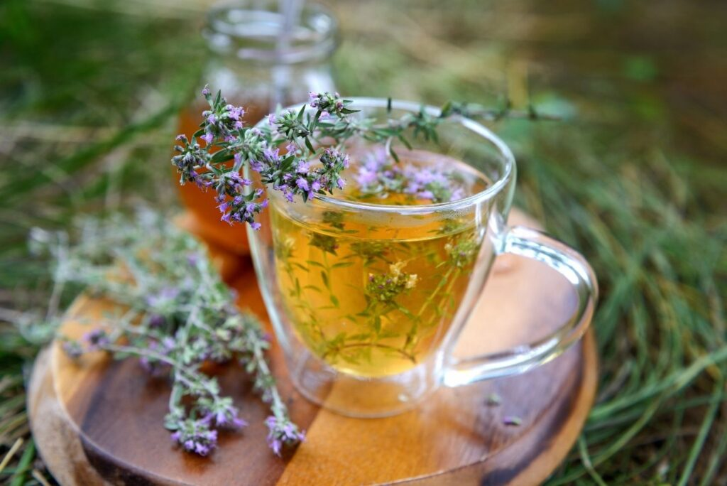 5 Best Herbs for Viral Lung Infections and How to Use Them - Wild Thyme