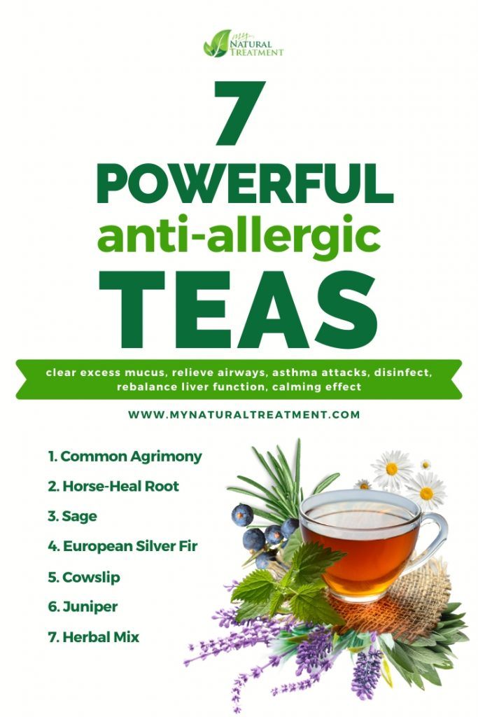 Anti-allergic teas that soothe allergic reactions and how to make them.
