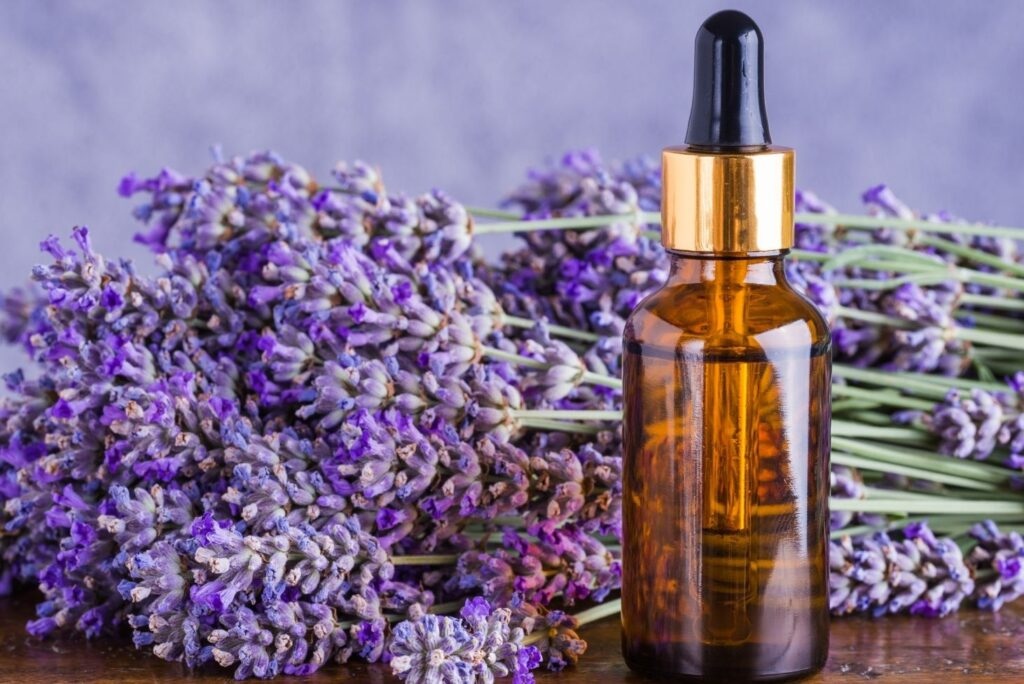 4 Effective Home Remedies for Mosquito Bites - Lavender Oil