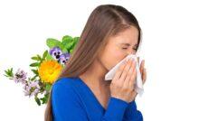 Allergic Asthma Tea