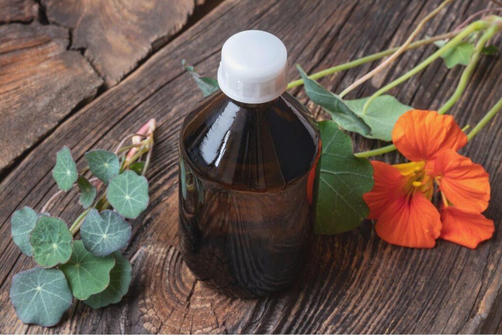 5 DIY Herbal Hair Rinses for Beautiful Glowing Hair - Garden nasturtium